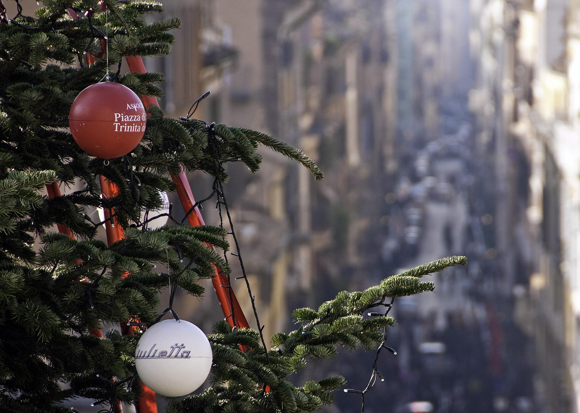 Christmas Tree Close up Rome