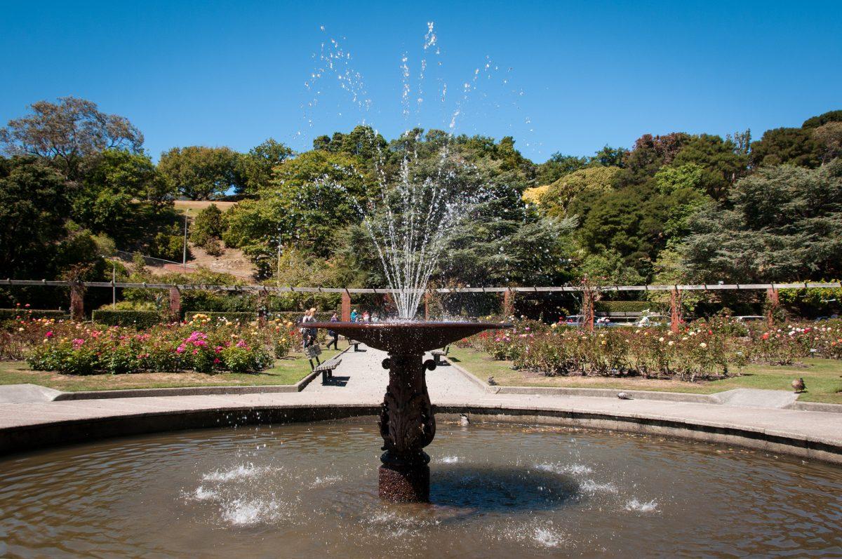 Lady Norwood Rose Garden Fountain