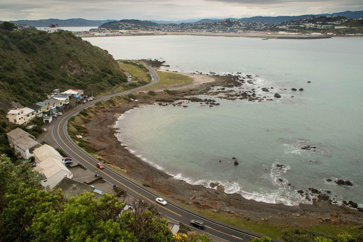 Waitara Cove and Lyall Bay, Wellington